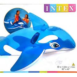 Delfin Strandcikkek