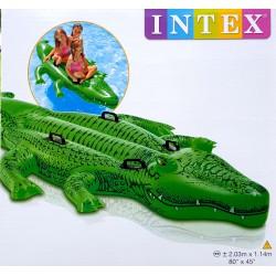 Nagy Krokodil Strandcikkek