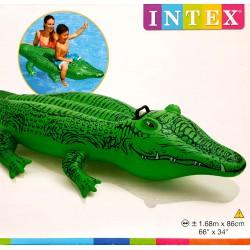 Krokodil Ráülős Strandcikkek