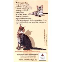 Macskák Játék Kártya Fiús Játékok