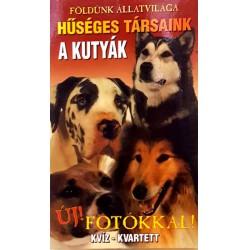 Kutyák Játék Kártya Fiús Játékok